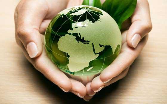 Gestion Medioambiental en la empresa